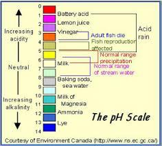 Aquarium Chemistry Calcium Kh Gh Ph Electrolytes