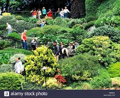 tourists walking down zigzag stairs through lush greenery at butchart gardens in victoria bc