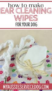 how to clean dog ears at home an easy