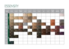 Schwarzkopf Professional Essensity Assortment En June 2016
