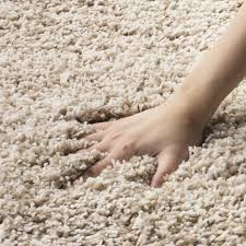 or high pile carpet which carpets hide and show footprints a guide pet my carpet