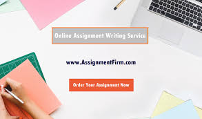 online assignment writing service pocket friendly  online assignment writing service