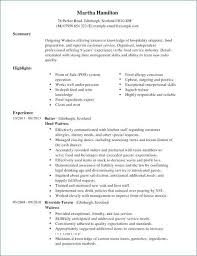 My Perfect Resume Fascinating My Perfect Resume Com Lovely the Perfect Resume Example