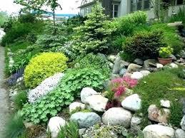 Rock Garden Design Ideas Beauteous Small Rockery Garden Small Rock Garden Ideas Planning R