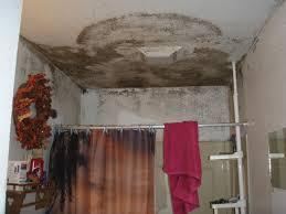 Best Way To Get Rid Of Mold On Bathroom Walls Image Bathroom 2017