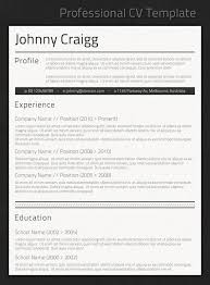 fancy resume templates free professional cv template http www resumecareer info professional