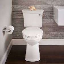 america bathtub and tile refinishing inspirational toss that toilet brush the new vormax plus toilet by