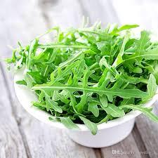 2018 400 arugula seeds ideal diy vegetable for cooking salad from novelty 1 26 24 dhgate com