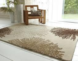 simple modern living room rugs area with nice simple sofa HowieZine