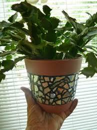 ... sealing terracotta pots for mosaic flower planters mesmerizing pot  ideas citrus purple decorating home decor designs ...