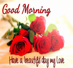 Good Morning My Love Quotes Awesome Good Morning I Love You Quotes For Her Unique Good Morning My Love