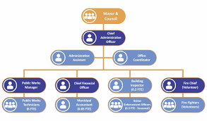 Metro Organization Chart Organizational Structure The Village Of Lions Bay