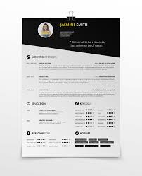 Simple Resume Template Vol 3