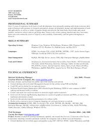 Summary Of Skills Resume Sample example of skills summary for resume resume summary objective 1