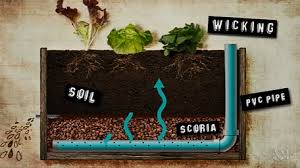self watering garden bed. Beautiful Bed Awesome Selfwatering Raised Bed Great For Hot Climates Rooftop Gardening  And Any Location With Bad Or No Soil Throughout Self Watering Garden Bed