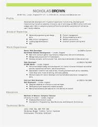 Word Resume Format Free Free Microsoft Word Resume Template