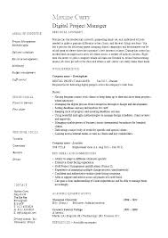 Project Management Resume Web Project Manager Technical Project