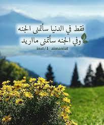 فقط في الدنيا سأتمنى الجنه ....وفي الجنه سأتمنى مااريد | Islamic pictures,  Islamic quotes, Islam quran