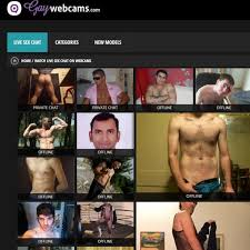 Gay live home cams