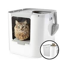 Best Litter Box Design The Best Litter Box For Multiple Cats Best Products For