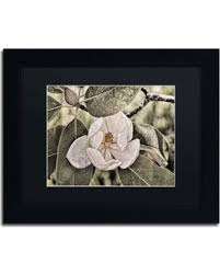 lois bryan white magnolia framed canvas wall art 16 x 20 inches black on white magnolia wall art with slash prices on lois bryan white magnolia framed canvas wall art