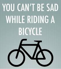 Bike Quotes Interesting The 48 Best Inspirational Cycling Quotes I Love Bicycling