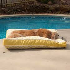 square dog bed outdoor