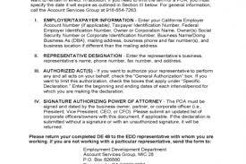 edd resume builder free creative resume templates word edd