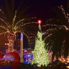 5 Best Places To Celebrate Christmas In San FranciscoChristmas Tree In San Francisco