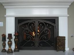 ams fireplace doors remodel ideas traditional living room
