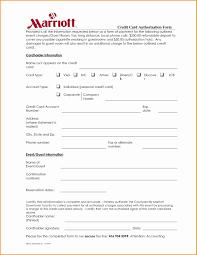 Spreadsheet Fill Credit Card Spreadsheet Excel High