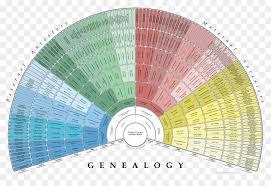Genealogy Family Tree Pedigree Chart Familysearch Ancestor Family