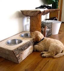 fantastic dog bed on dog beds pet hotel and raised dog beds