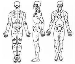 Knockout Pressure Point Chart Pressure Points
