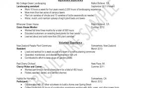How To Write A Resume Sample Free Striking How To Prepare Resume Sample Making Good Tips On Writing 44