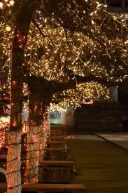 outdoor tree lighting ideas. Http://cygstarz.hubpages.com/hub/Stringing-Outdoor-Tree-Lights Outdoor Tree Lighting Ideas