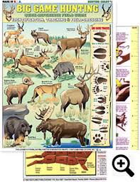 Big Game Hunting Charts From Tightlines Publications