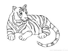 Tiger Color Sheet Tiger Coloring Sheets To Print Pages Printable
