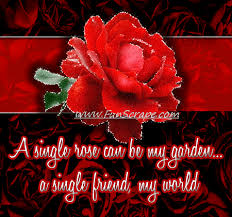 Beautiful Flowers Images With Friendship Quotes Best of A Single Rose Can Be My Gardena Single Friend My World Pictures