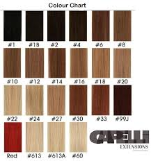 Hair Extension Color Chart Capelli Extensions International Colour Chart Clip Ins And