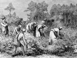 slavery how women s key role in abolition has yet to receive the slavery how women s key role in abolition has yet to receive the attention it deserves the independent