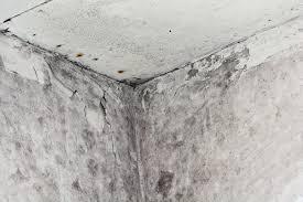 Luftentfeuchter Keller So Entfeuchten Sie Die Kellerräume Heimhelden