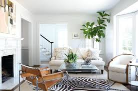 zebra area rug in living room layered over gray bound sisal with coffee on canada zebra area rug