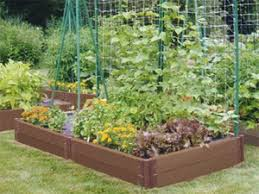 Small Picture Low Budget Veggie Garden Ideas Your Own Food Small
