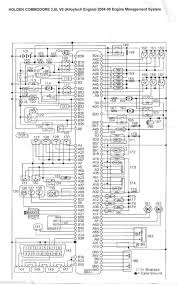 vy ls wiring diagram vy image wiring diagram vx ls1 alternator wiring diagram jodebal com on vy ls1 wiring diagram