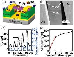 a schematic illustration of the cupc nanowire fet sen open i a schematic illustration of the cupc nanowire fet sensors b a