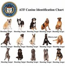 Bacco F Atf Canine Identification Chart 1972 Shooting Target