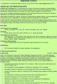 49 Best Resume Writing Service Images On Pinterest Resume Writing