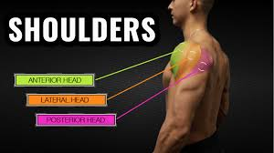 best shoulder workout for m thumbnail