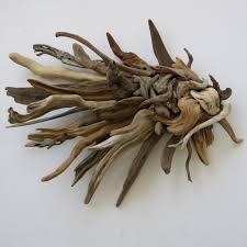 kmaf hand made driftwood angel fish on driftwood wall art uk with natural driftwood angel fish wall sculpture karen s work doris
